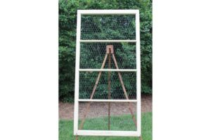Cream 4 Section Chicken Wire Frame