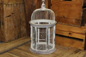 Worn White Birdcage