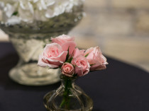 Bud Vases: Photo Credit: Andrea Paradowski Photography