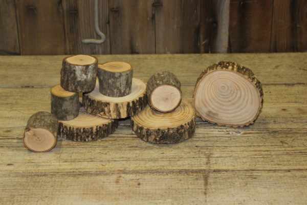 Assorted Small Wood Slices