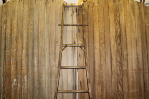 Apple Picker Ladder