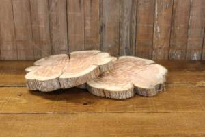 Cedar Wood Slices