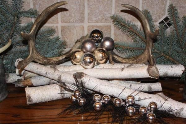 Assorted Birch & Antlers