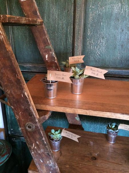 Ladder Shelf Display